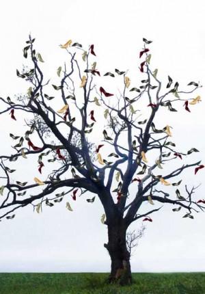 Anne Tilby shoe tree