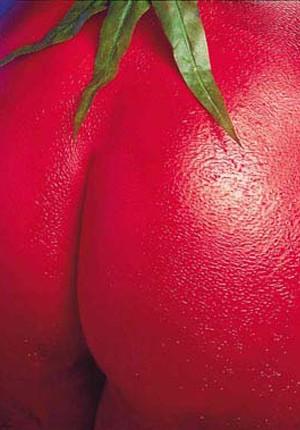 tilby twin cheeks tomato